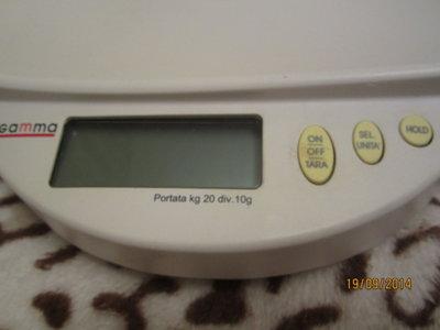 Весы электронные GAMMA